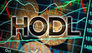 هودل (HODL)