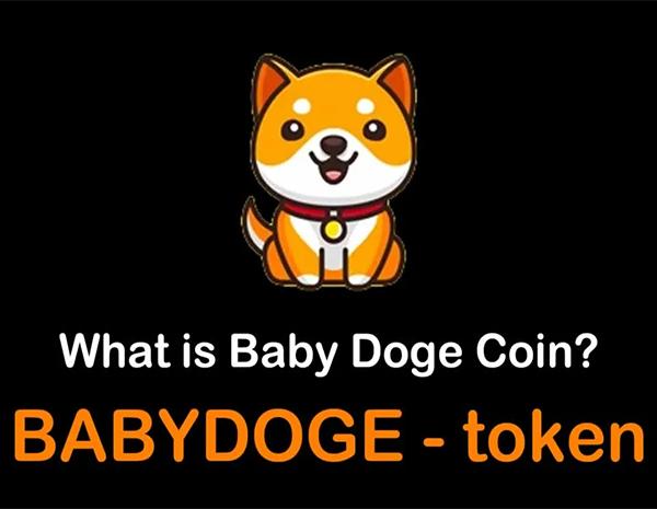 بیبی دوج (Baby Doge) چیست و سرمایه گذاری در آن چه آینده ای دارد؟
